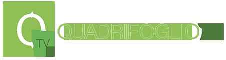 logo-quadrifoglio-tv-login